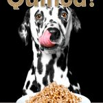 Can Dogs Eat Quinoa? What Are the Health Benefits of Quinoa for Dogs?