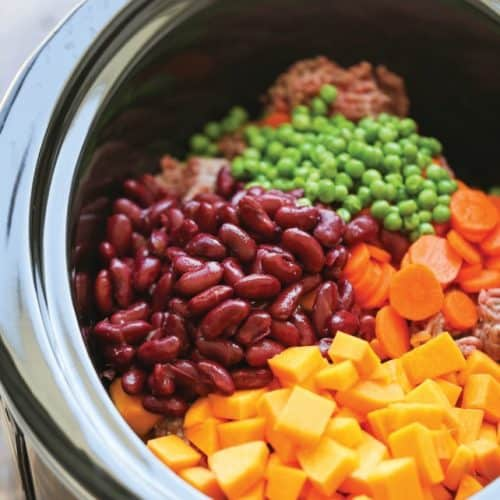 Can Dogs Eat Beans? Which Beans Are Not Safe for Dogs? 4