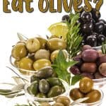 Can Dogs Eat Olives? Are Olives Toxic to Dogs?