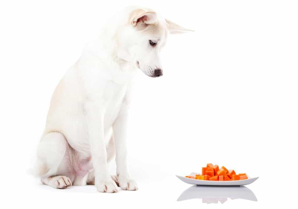 It's A Nutrient-Dense Tropical Fruit, Can Dogs Eat Papaya? 4