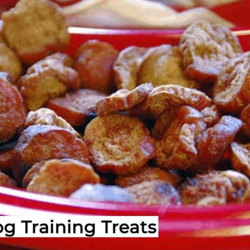 They're Not Healthy, But They Sure Are Yummy, Can Dogs Eat Hot Dogs? 5