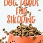 The Best Dog Food for Shedding [year] – See If Your Dog's Food Is in the List