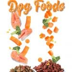 [year] Best Salmon Dog Food Brands: A Healthy Choice for Sensitive Dogs