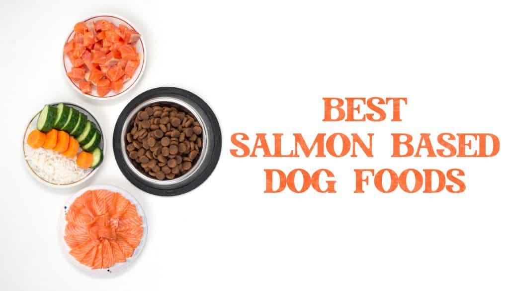 Best Salmon Dog Food