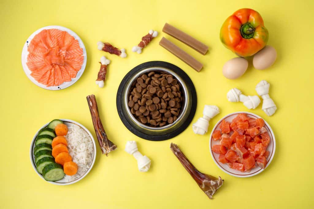 [year] Best Salmon Dog Food Brands: A Healthy Choice for Sensitive Dogs 27