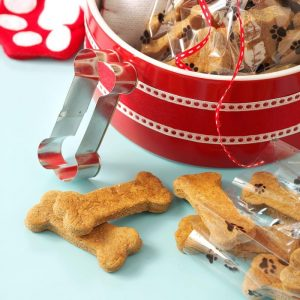 Can Dogs Eat Ginger? Is Ginger A Great Addition To Your Fido's Diet? 4
