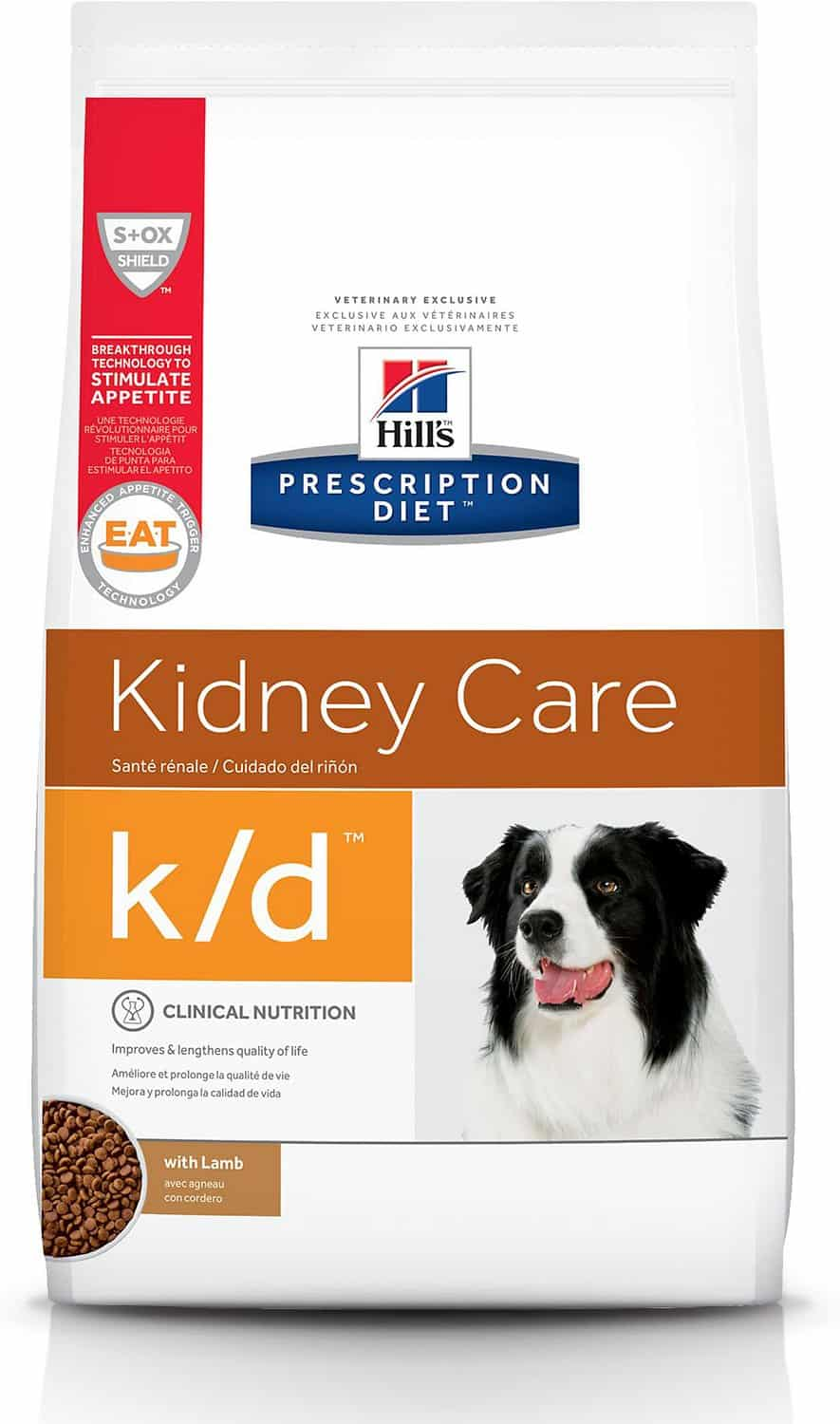 Best Dog Food for Seizures: Help Prevent Seizures with the Right Diet 19