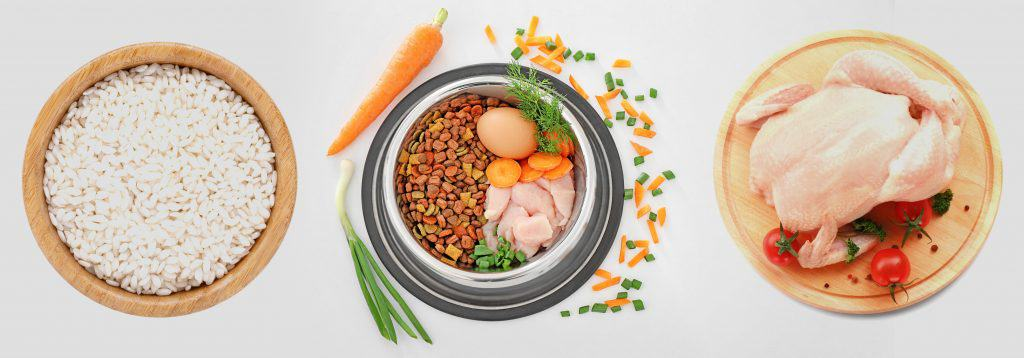 10 Best & Healthiest Dog Foods with Chicken and Rice 1