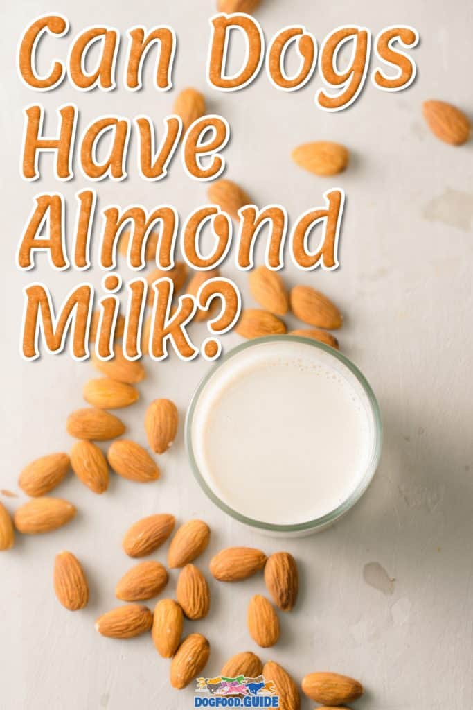 Can Dogs Have Almond Milk
