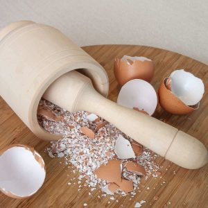 Can Dogs Eat Egg Shells? Are Egg Shells Safe For Dogs? 5
