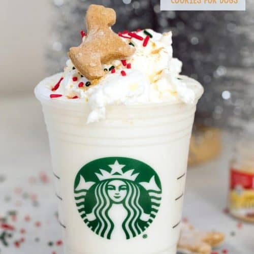 Can Dogs Eat Whipped Cream? Is It Alright For My Pooch To Have Some Puppuccino? 5