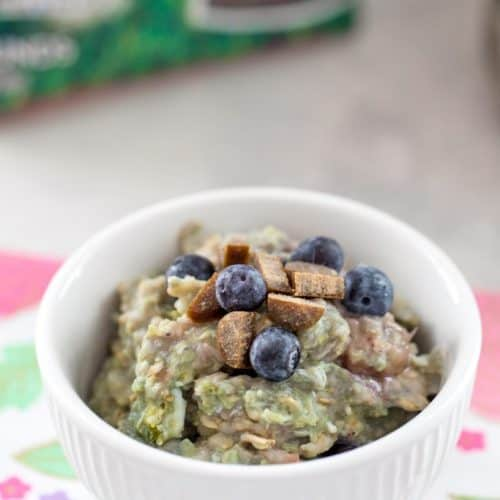 BERRY EGG OATMEAL RECIPE FOR DOGS