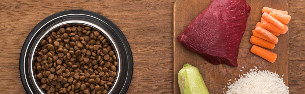 Best Dog Food For IBD: Our Top 9 Selections To Manage The Disease 26