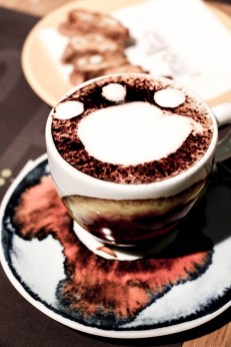 Café Illy Roma.