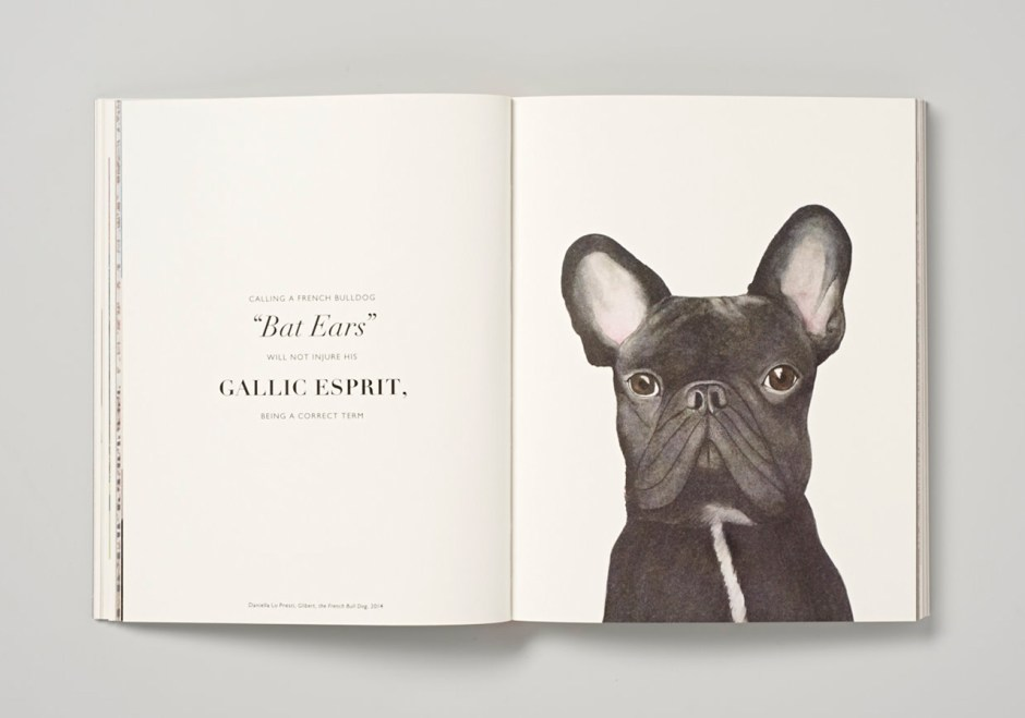 """Gilbert, the French Bull Dog"" by Daniella Lo Presti"