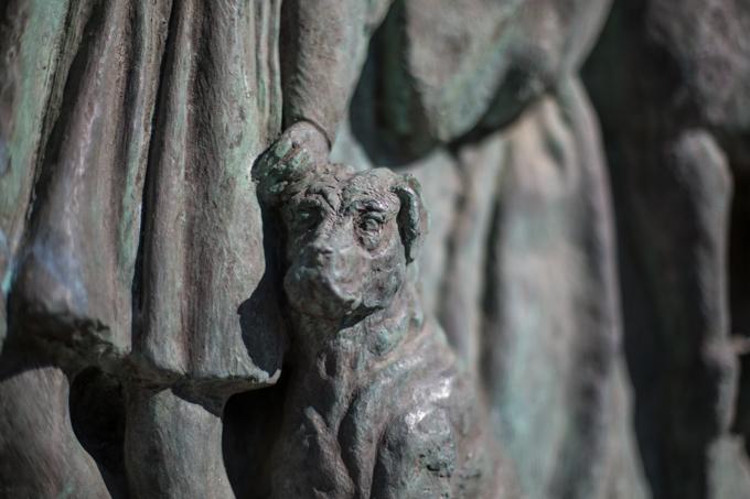 Un perro en una placa histórica.