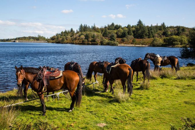 Derby. Foto: The British Horse Society