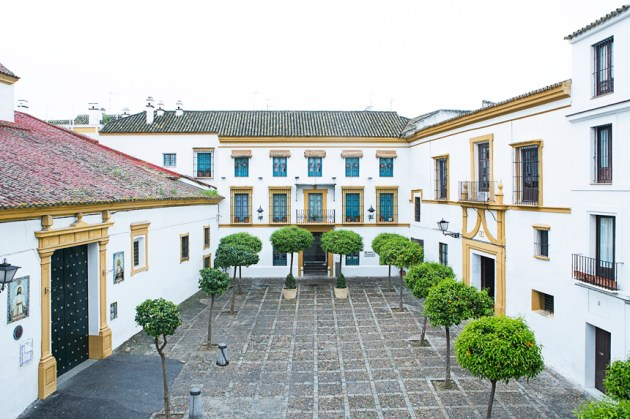 Patio de naranjos.