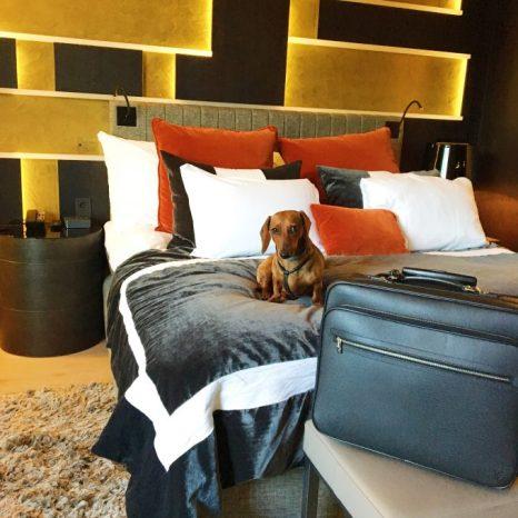 Mientras me dispongo a abrir la maleta de Louis Vuitton, Eros no me quita los ojos de encima; él tiene tantas ganas como yo de descubrir Oslo.