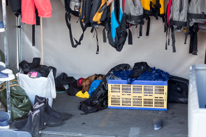 Kayak Oslo Tour