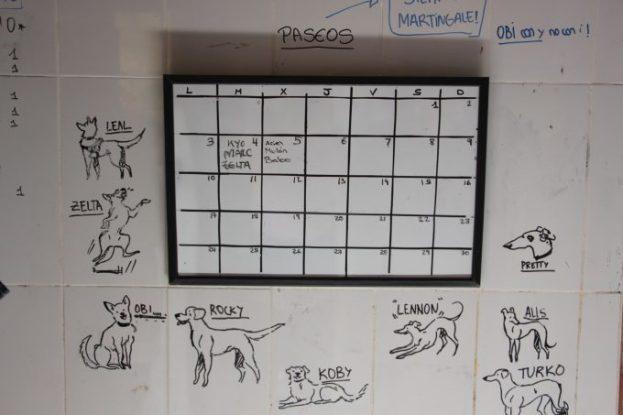 Agenda de la semana para los paseos y dibujos de los perros residentes.
