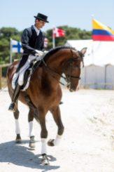 Instantánea de una relación (familia) donde se ve amor; el caballo posee una sensibilidad única, especial, es fiel y majestuoso.