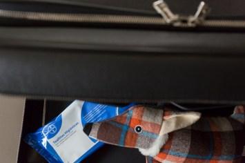 Toallitas y zorro de Eros en la maleta de LOUIS VUITTON.