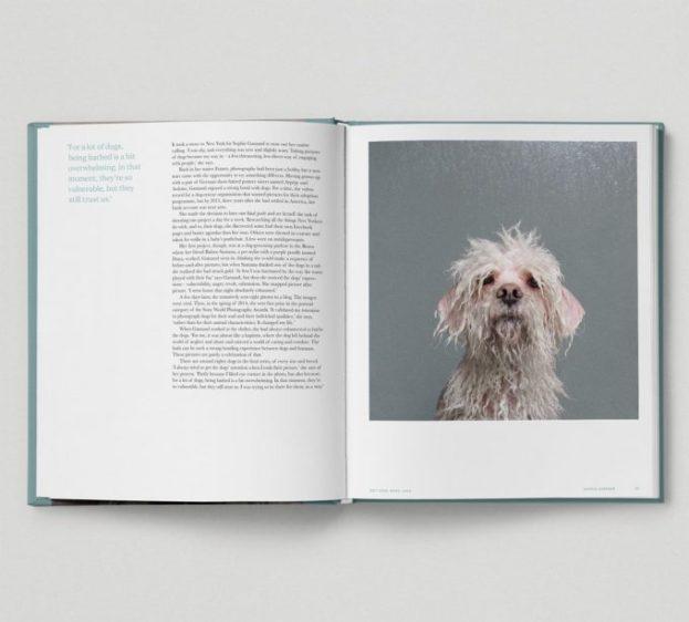 """Páginas del libro """"Really Good Dog Photography""""."""