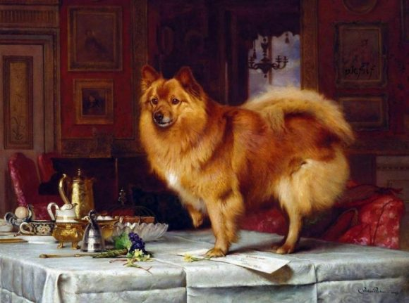 Retrato de un pomerania de la Reina sobre la mesa del desayuno de Su Majestad, 'Marco on the Queen's Breakfast Table', 1893.