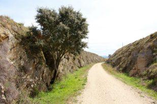 Vía Verde de la Plata