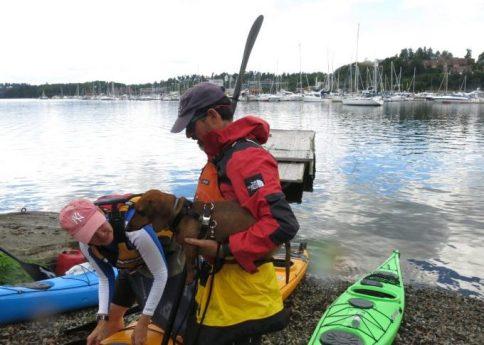 Oslo Kayak Tours.