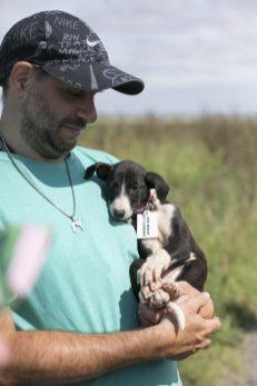 Cachorro_rescatado