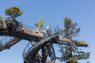 Esta rama gigante forma parte del nuevo proyecto.