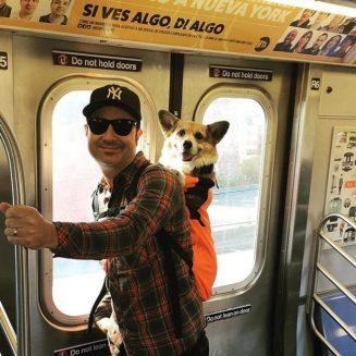 Gorki en el metro.