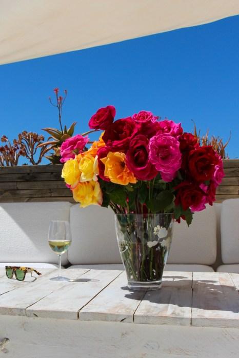 Las rosas en Cas Gasi no faltan.