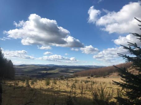 Kirkhill Forest Walk
