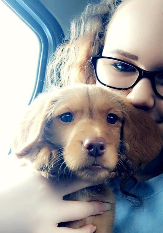 How Dogs Help With Autism - World Autism Week - Dog Furiendly