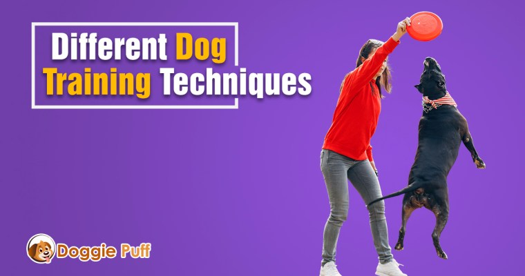 Different Dog Training Techniques