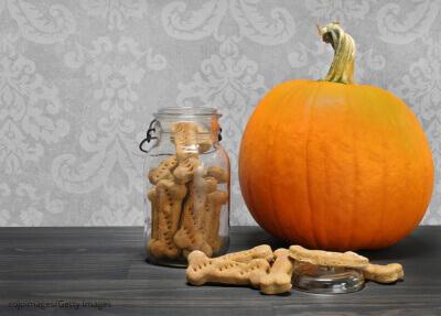 Pumpkin for Dogs Treats in a Jar