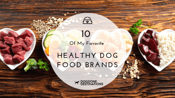 10 Of My Favorite Healthy Dog Food Brands Right Now