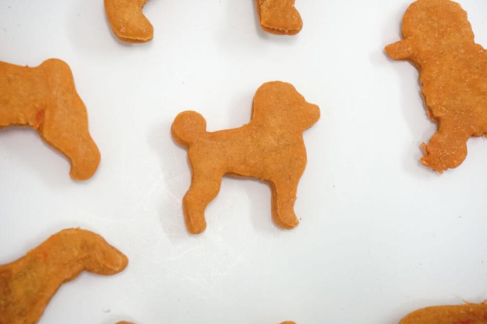 Beneficios de los Snacks naturales para mascotas y como diferenciarlos