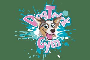 Dog Trick Gym