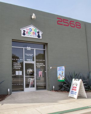 Our Dog House, Ventura CA, Dog Day Care, Kennel