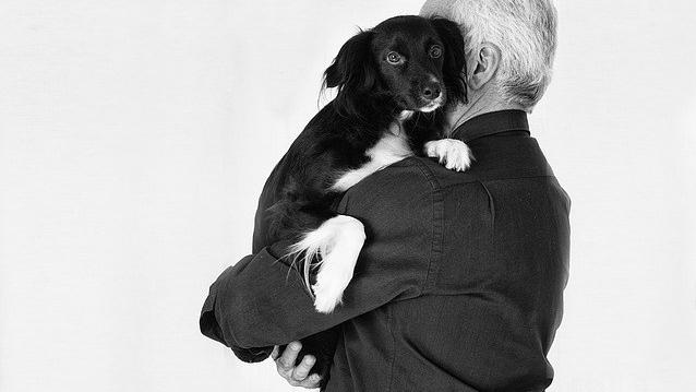 Dogminancia_respeto perro-3