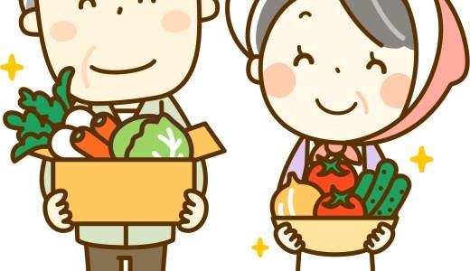 【結論】犬が食べていい野菜【食べてはいけない野菜は少ないですよ】
