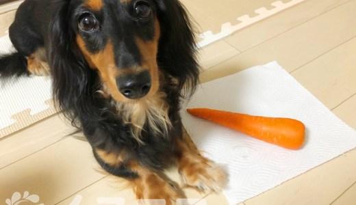 【保存版】犬はにんじんを食べても大丈夫。【生、皮、葉っぱもOK】