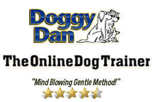 http://order0105.doggyd4n.hop.clickbank.net/?rd=easy-way