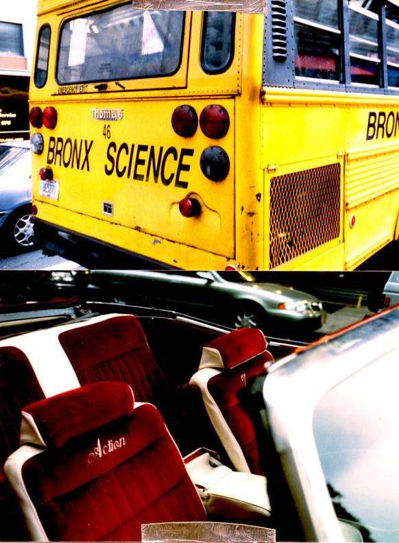 Action Jackson Bronx Science Harlem NY
