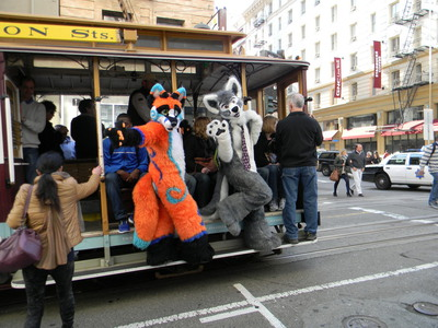 Groggy fox and Sakura on a San Francisco cable car