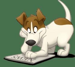 dog-daycare-news